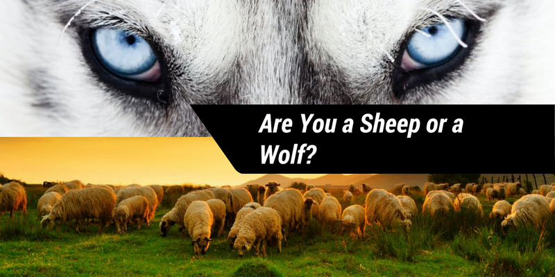 Are You a Sheep or a Wolf?